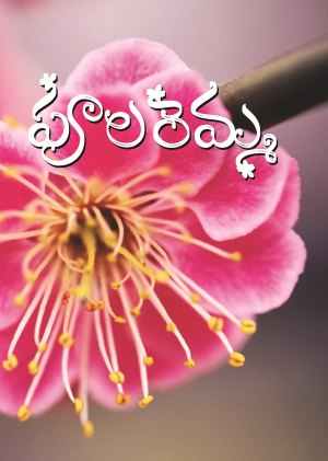 telugu islamic publications books free download pdf